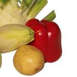 Fenchel, Chicoree, Paprika, Kartoffel